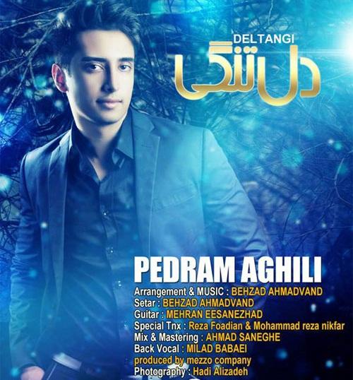 Pedram Aghili – Deltangi