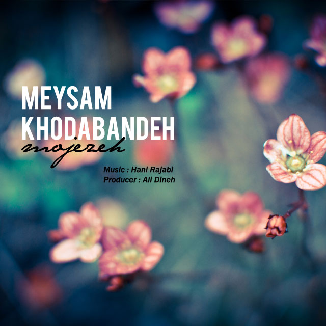 Meysam Khodabandeh – Mojezeh