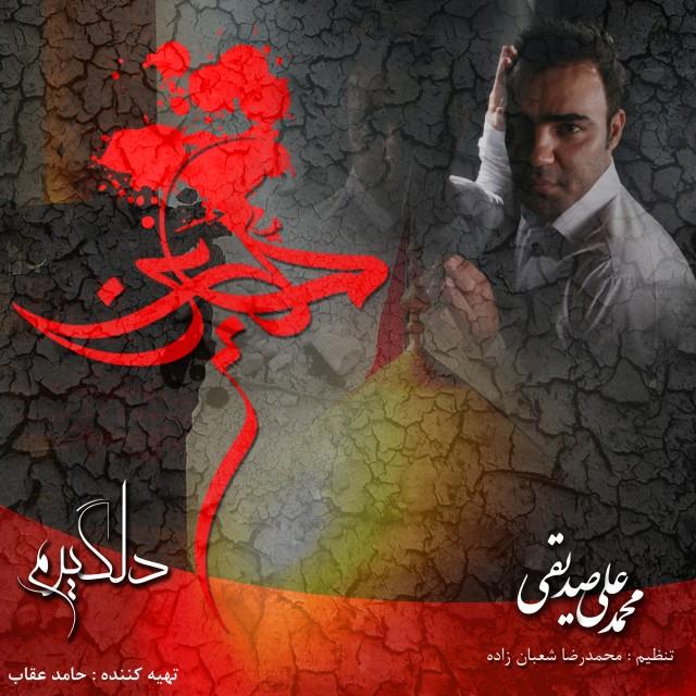 Mohammad Ali Seddighi – Delgiram