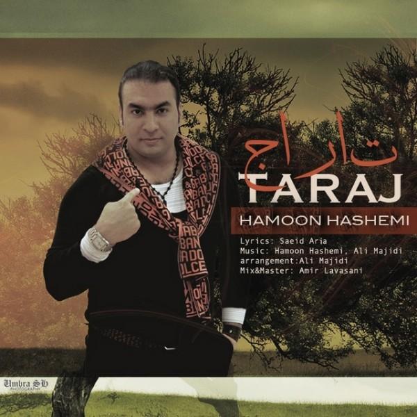 آهنگ جدید هامون هاشمی به نام تاراج