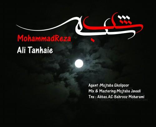 آهنگ جدید علی تنهایی و محمدرضا به نام شب شده