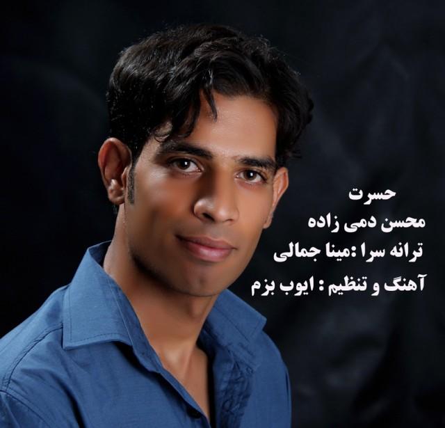 Mohsen Damizade – Hasrat