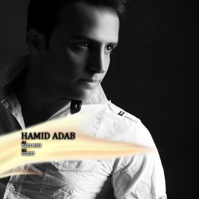 Hamid Adab – 2New Track's