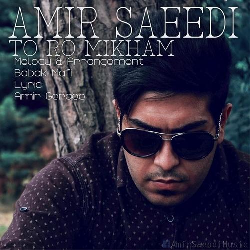 Amir Saeedi – Toro Mikham