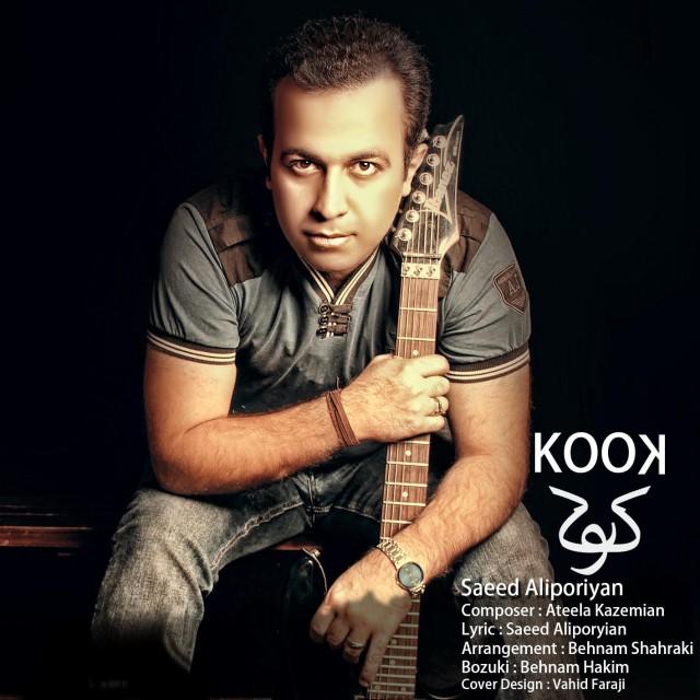 Saeed Aliporyian – Kook