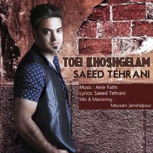 آهنگ جدید سعید تهرانی به نام تویی خوشگلم