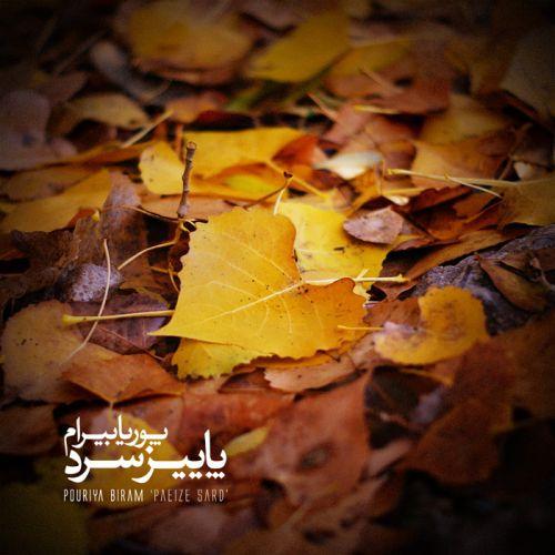 آهنگ جدید پوریا بیرام به نام پاییز سرد