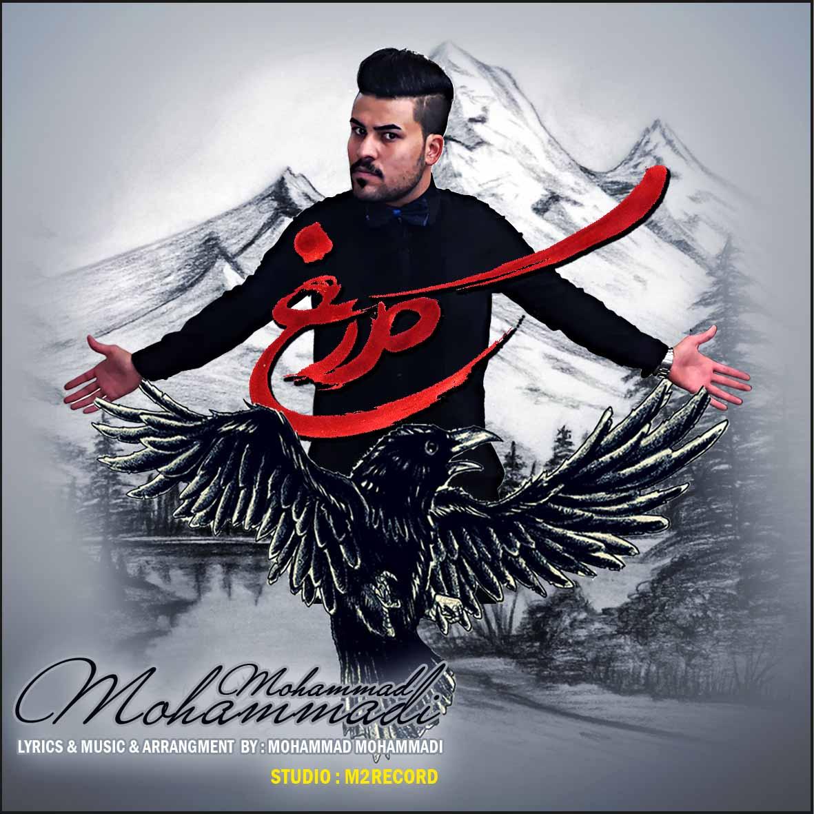 آهنگ جدید محمد محمدی به نام کلاغ