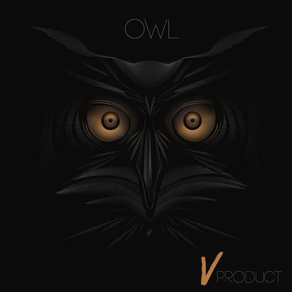 آهنگ جدید گروه V به نام Owl