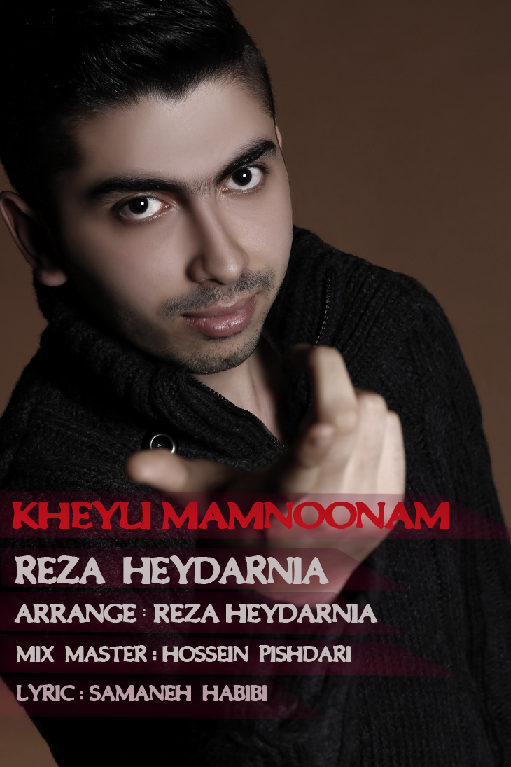 آهنگ جدید رضا حیدرنیا به نام خیلی ممنونم