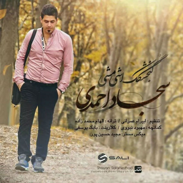 دانلود آهنگ جدید سجاد احمدی به نام گنجشکک اشی مشی
