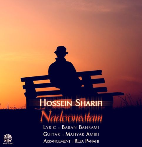 دانلود آهنگ جدید حسین شریفی به نام ندونستم