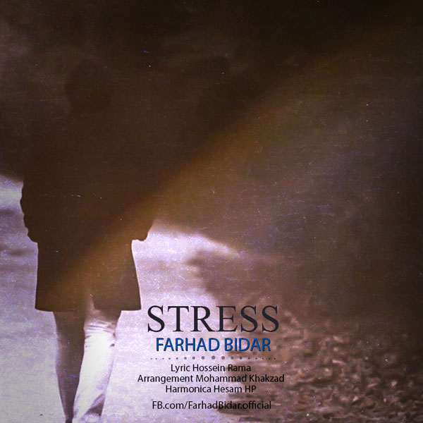Farhad Bidar- stress