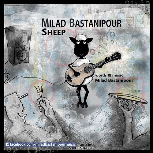 Milad Bastanipour – Sheep