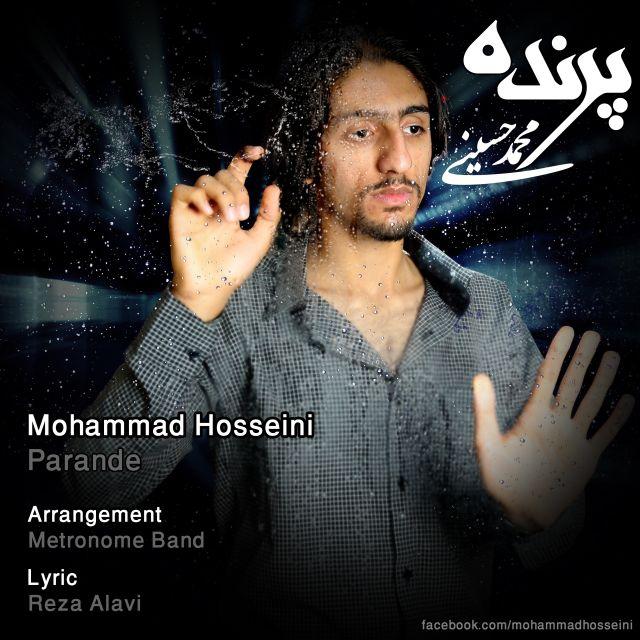 Mohammad Hosseini – Parande