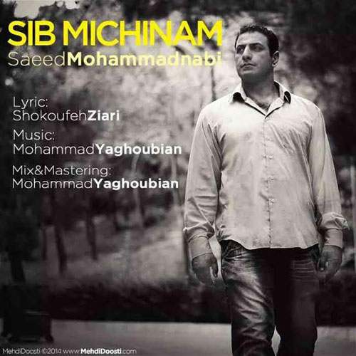Saeed Mohammad Nabi – Sib Michinam