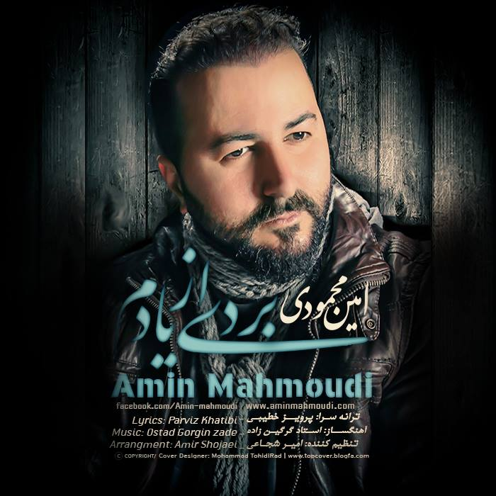 دانلود آهنگ جدید امین محمودی به نام بردی از یادم