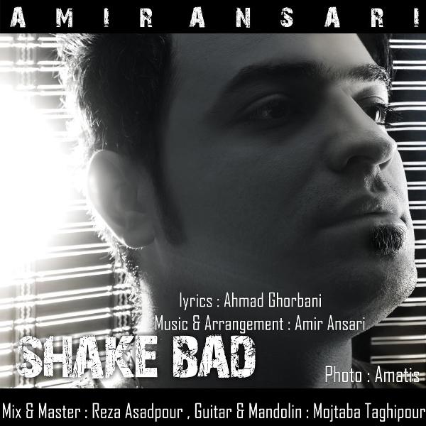 Amir Ansari – Shake Bad