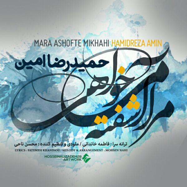 Hamidreza Amin – Mara Ashofte Mikhahi