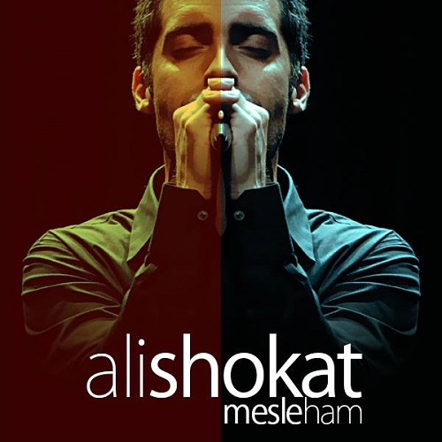 Ali Shokat – Mesle Ham
