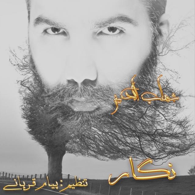 دانلود آهنگ جدید شهاب الدین به نام نگار