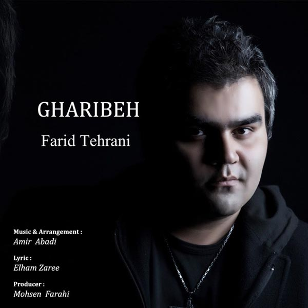 دانلود آهنگ جدید فرید تهرانی به نام غریبه