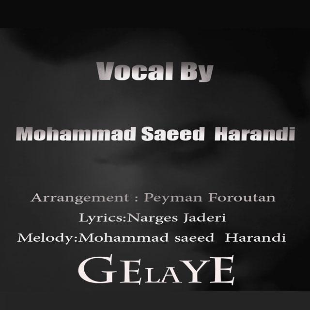دانلود آهنگ جدید محمد سعید هرندی به نام گلایه