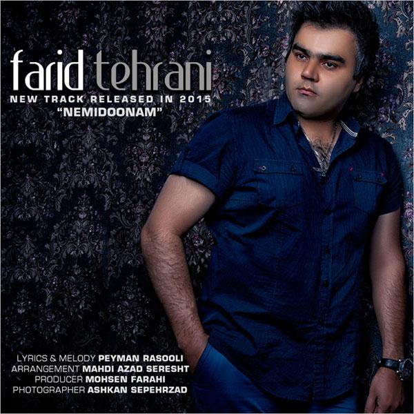 دانلود آهنگ جدید فرید تهرانی به نام نمیدونم