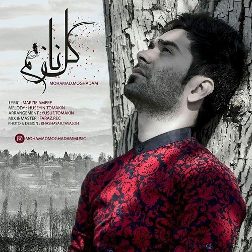 دانلود آهنگ جدید محمد مقدم به نام گل نازم