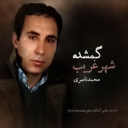 دانلود آهنگ جدید محمد ناصری به نام گمشده شهر غریب