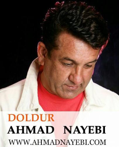 دانلود آهنگ جدید احمد نيبي به نام دُل دور