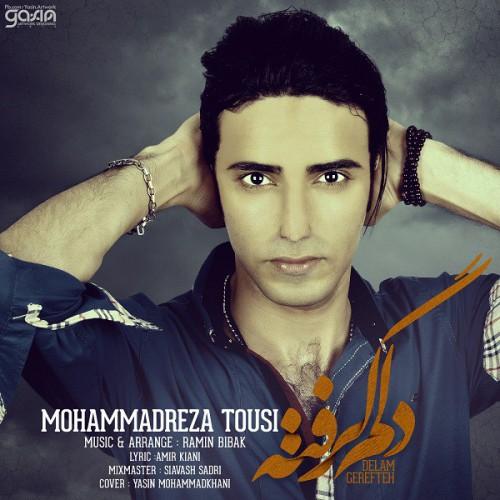 دانلود آهنگ جدید محمد رضا طوسی به نام دلم گرفته