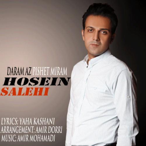 دانلود آهنگ جدید حسین صالحی به نام دارم از پیشت میرم