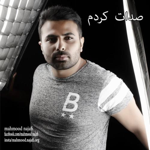 دانلود آهنگ جدید محمود نجفی به نام صدات کردم