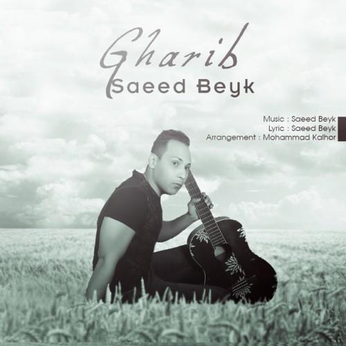 دانلود آلبوم جدید سعید بیک به نام غریب