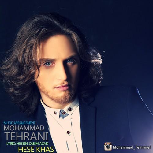 دانلود آهنگ جدید محمد تهرانی به نام حس خاص