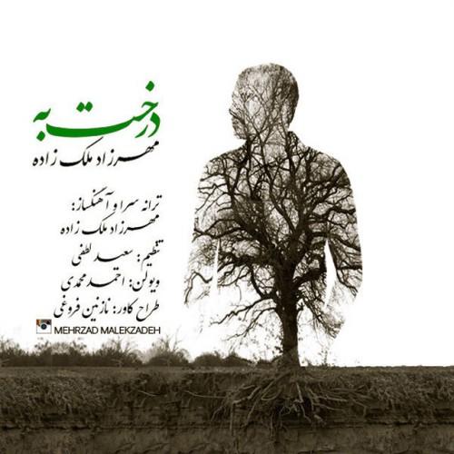 دانلود موزیک ویدیو جدید مهرزاد ملك زاده به نام درخت به