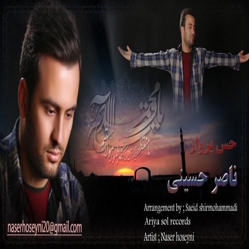 دانلود آهنگ جدید ناصر حسینی به نام حس پرواز
