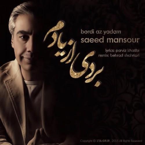 دانلود آهنگ جدید سعید منصور به نام بردی از یادم