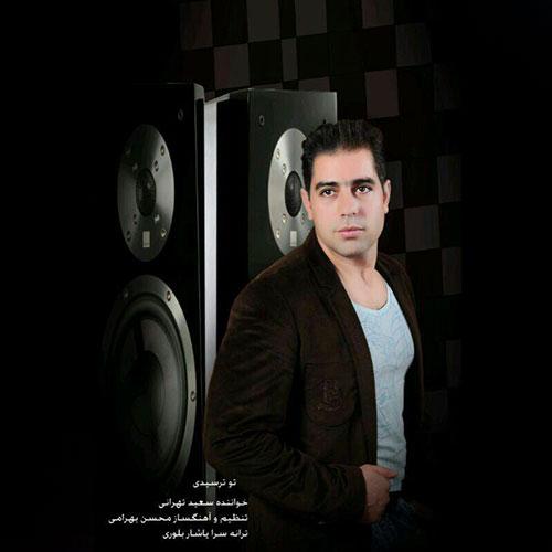 دانلود آهنگ جدید سعید تهرانی به نام تو ترسیدی