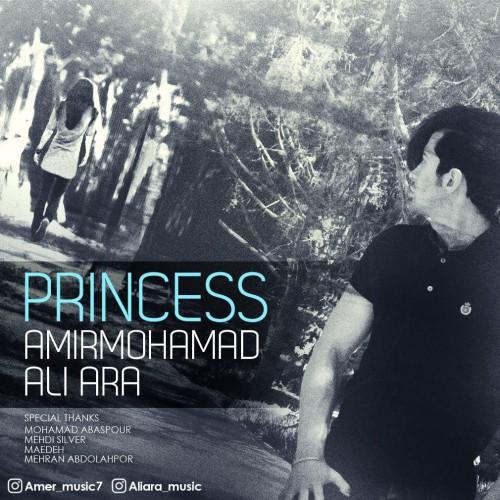 دانلود آهنگ جدید امیرمحمد و علی آرا با نام Princess