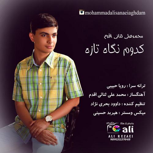 دانلود آهنگ جدید محمد علی ثنائی اقدم بنام نگاه تازه