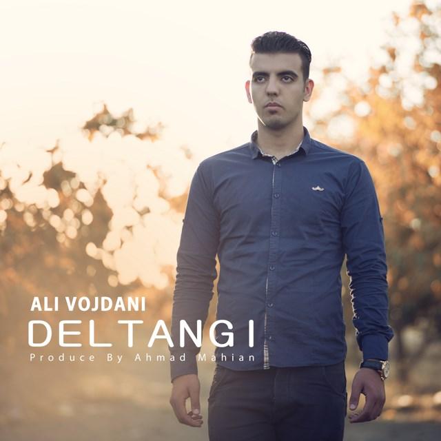 دانلود آهنگ جدید علی وجدانی بنام دلتنگی