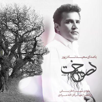 دانلود آهنگ جدید سعید نادر پور بنام درخت