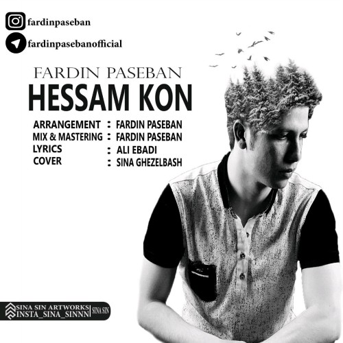 دانلود آهنگ جدید فردین پاسبان بنام حسم کن