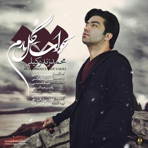 دانلود آهنگ جدید محمد زندوکیلی بنام بخواب گل نازم