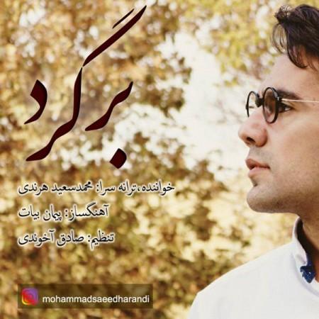 دانلود آهنگ جدید محمدسعید هرندی بنام برگرد