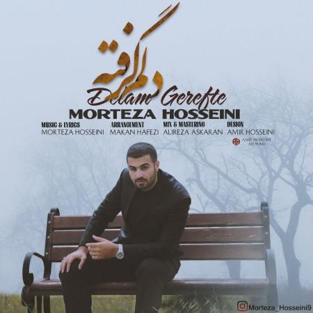 دانلود آهنگ جدید مرتضی حسینی به نام دلم گرفته
