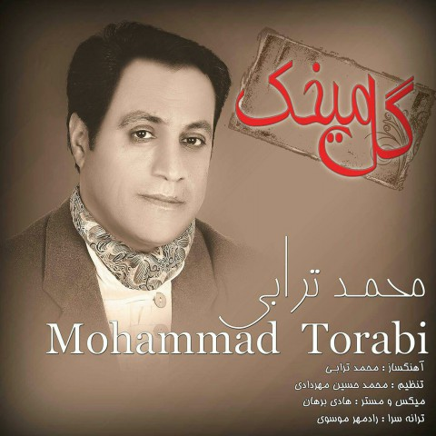 دانلود آهنگ جدید محمد ترابی بنام گل میخک