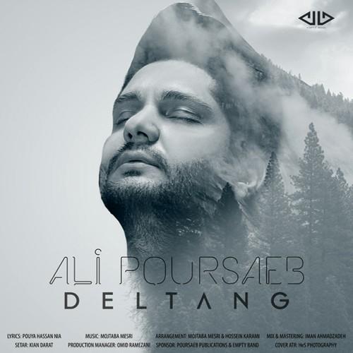 دانلود آهنگ جدید علی پورصائب بنام دلتنگ